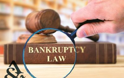 The Insolvency and Bankruptcy Code (Amendment) Ordinance, 2020